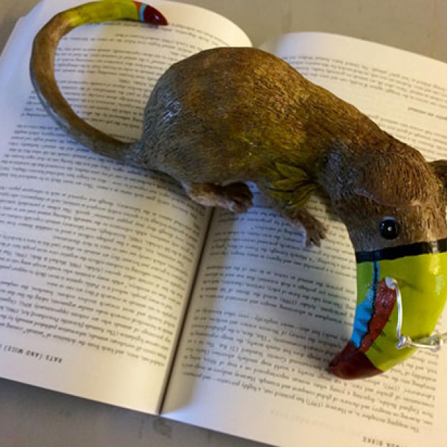 Story of the Mousecan copyright @ Ashley Bremer