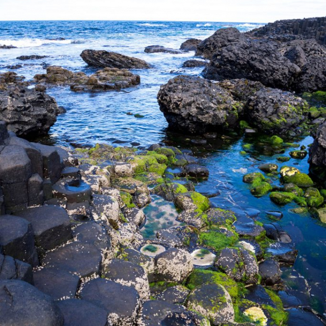 Giant's Causeway copyright @ Ashley Bremer